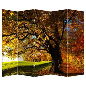 Paraván - Podzimní strom (P020838P225180)