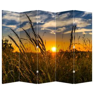 Paraván - Mező naplementekor (P021001P225180)