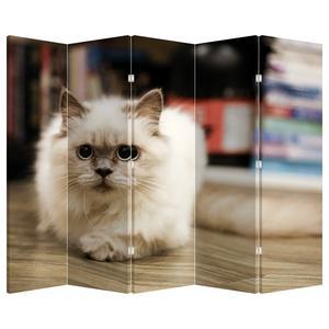 Paraván - Bílá kočka (P021124P225180)