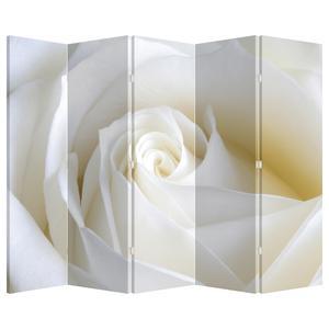 Paraván - Biela ruža (P021208P225180)