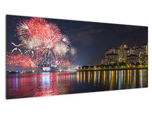 Tablou cu artificii in Singapur (V020035V10040)