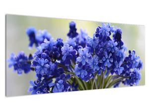 Obraz kytice modrých květů (V020175V10040)