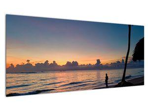 Kép egy nőről a tengerparton (V020204V10040)