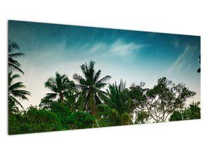 Tablou - palmierii (V020239V10040)
