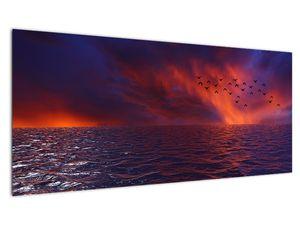 Obraz moře s ptáky (V020351V10040)