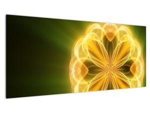 Obraz žluté květiny (V020451V10040)