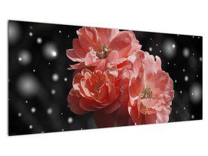 Obraz růžové květiny (V020471V10040)