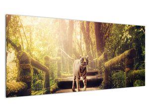 Slika tigra u džungli (V020479V10040)