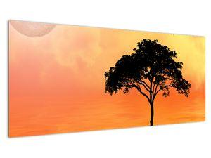 Obraz stromu v západu slunce (V020480V10040)