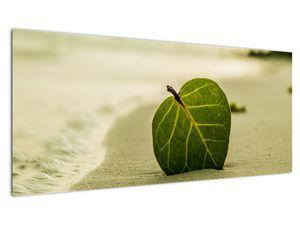 Kép egy levél a homokban (V020485V10040)
