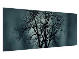 Obraz stromu v zatmění (V020675V10040)