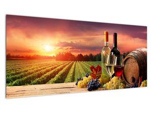 Slika vinograda s vinom (V020717V10040)