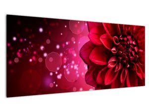 Obraz červené kvety (V020807V10040)