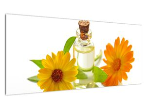 Obraz květinového oleje (V020872V10040)