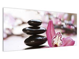Obraz masážních kamenů a orchidee (V020910V10040)