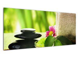 Obraz masážních pomůcek (V020925V10040)