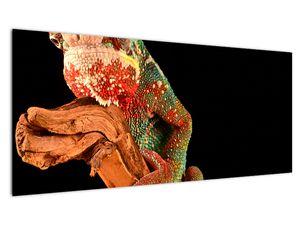 Obraz chameleona na větvi (V021125V10040)
