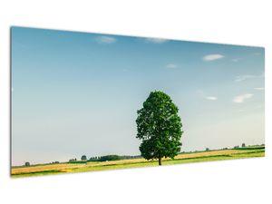 Obraz stromu na louce (V021171V10040)