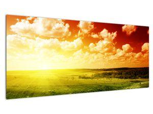 Obraz lúky so žiariacim slnkom (V021174V10040)