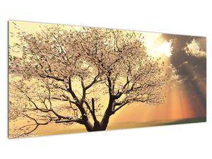 Slika stabla na livadi (V021277V10040)