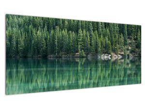 Slika - Četinari uz jezero (V021328V10040)