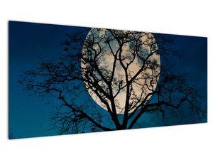 Obaz stromu s úplňkem (V021355V10040)