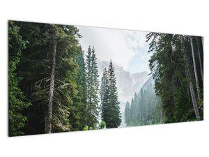 Slika šumskog jezera (V021386V10040)