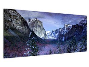 Slika - Yosemite, SAD (V021518V10040)