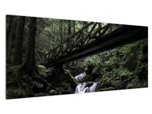 Obraz z černého lesa (V021686V10040)
