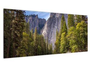Kép - A Yosemite szikla alatt (V021691V10040)