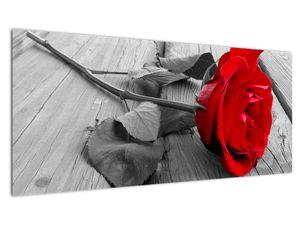 Slika crvene ruže (V022288V10040)