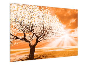 Oranžový obraz stromu (V020095V10070)