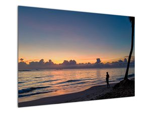 Kép egy nőről a tengerparton (V020204V10070)