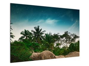 Tablou - palmierii (V020239V10070)