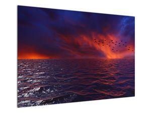 Obraz moře s ptáky (V020351V10070)