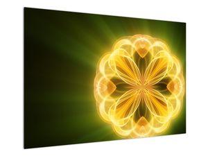 Obraz žluté květiny (V020451V10070)