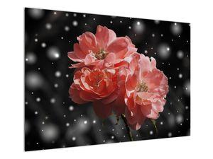 Obraz růžové květiny (V020471V10070)