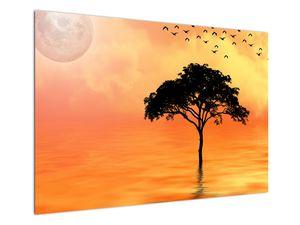 Obraz stromu v západu slunce (V020480V10070)