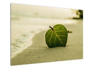 Kép egy levél a homokban (V020485V10070)