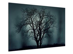 Obraz stromu v zatmění (V020675V10070)