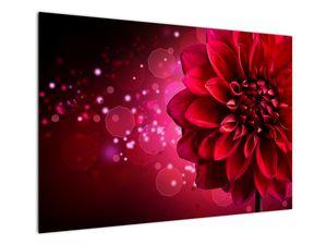 Obraz červené kvety (V020807V10070)