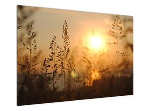 Obraz východu slunce (V020870V10070)