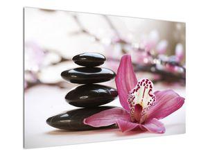 Obraz masážních kamenů a orchidee (V020910V10070)