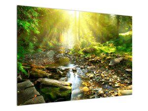 Obraz řeky v zeleném lese (V020942V10070)