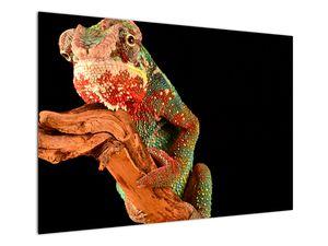 Obraz chameleona na větvi (V021125V10070)