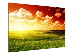 Tablou cu luncă cu soarele strălucitor (V021174V10070)