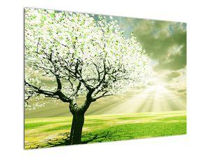 Obraz stromu na lúke (V021282V10070)