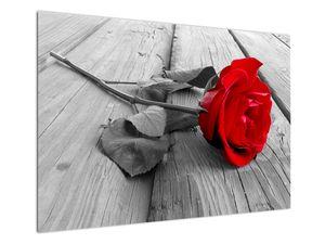 Slika crvene ruže (V022288V10070)