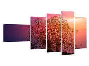 Obraz stromů v mlze (V020088V11060)