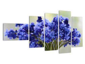 Obraz kytice modrých květů (V020175V11060)